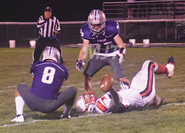 Panthers' playoff plans halted at Fort Recovery