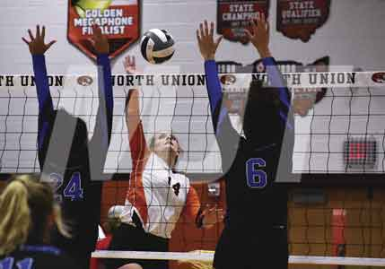 NU Lady Cats breeze way to victory during district volleyball semifinals